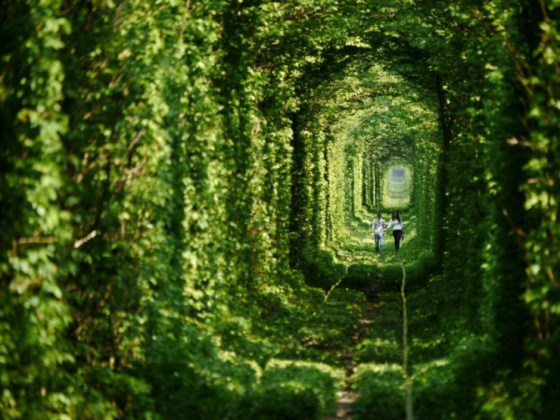 Tunnel-of-Love-in-Ukraine-4-740x555